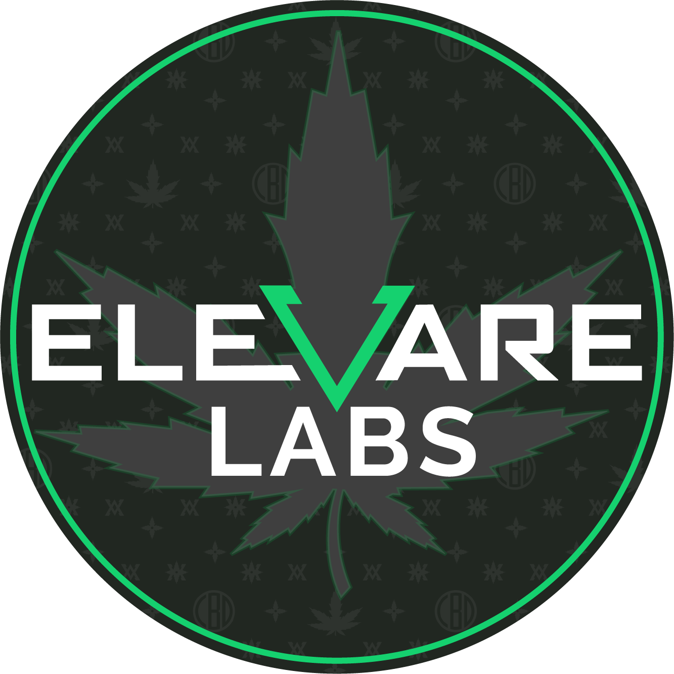 Elevare Labs Circle Logo